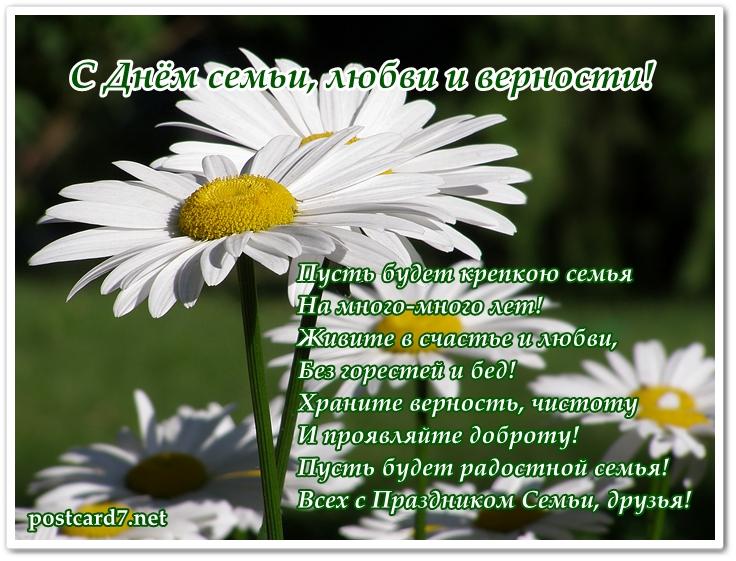 Открытка с праздником международный день семьи , с цветами ромашками . Открытка , картинка с международным праздником день семьи , на открытке красивый цветок ромашка символ праздника летний цветок,он олицетворяет чистоту,верность и нежность.