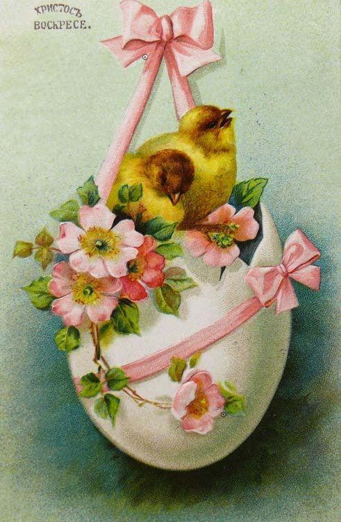 Пасха , светлый праздник пасхи , ретро открытка , с циплёнком. Пасха , светлый праздник пасхи , картинка , открытка ретро стиль , винтаж , на открытке изображено пасхальное яйцо , жёлтый циплёнок , красивые цветы , с пасхой.
