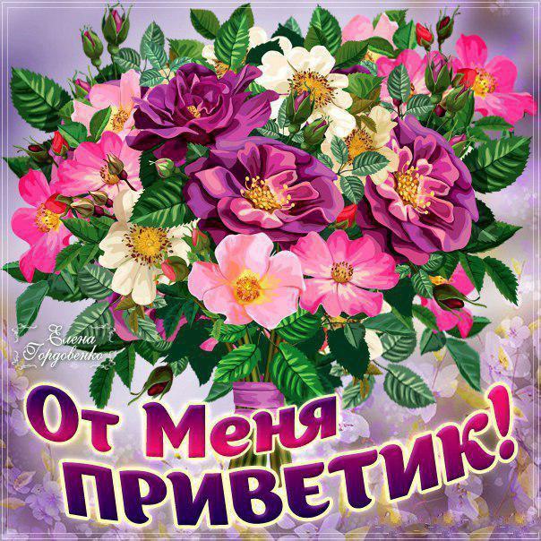 Открытка привет, приветик , открытки приветствие , красивые цветы. Картинка , открытка привет , приветик, на открытке красивые цветы , картинки со словом привет, открытки со словом , надписью привет , приветик , яркие открытки привет , приветик.