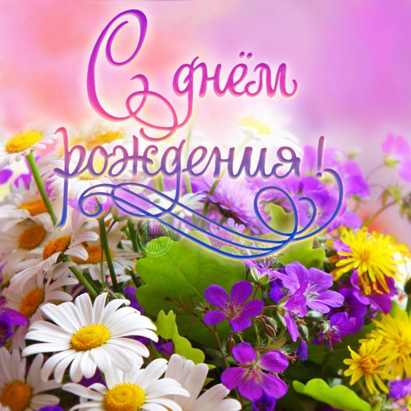С днём рождения ! открытки с поздравлениями с днём рождения . С днём рождения , открытки , картинки с днём рождения , с пожеланиями , с поздравлениями с красивыми нежными цветами пастельных тонов , сиреневые , розовые нежные цветы.