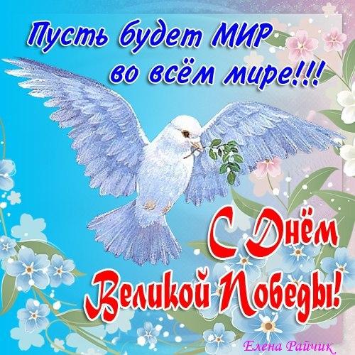 9 мая день победы , открытки с праздником победы , с голубями. 9 мая день победы , открытки , картинки с праздником победы ,с изображением на картинке голубей , чистого неба над головой , белый голубь ,голубь летит, с днём победы .