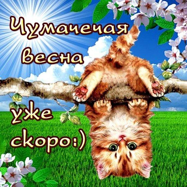открытки прикольные на тему времена года ,смешные картинки про весну. прикольные открытки на тему  времена года ,сменые картинки про весну , открытки юмористического характера про весну , яркие открытки с юмором весна , весенние .