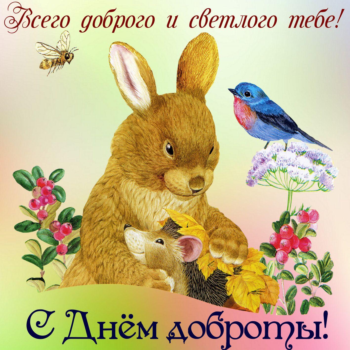 Открытка с международным днём доброты , с праздником с днём доброты ,заяц Картинка , открытка с международным днём доброты , открытки на день доброты ,13 ноября, на открытке изображён заяц,  открытка с днём доброты скачать бесплатно .