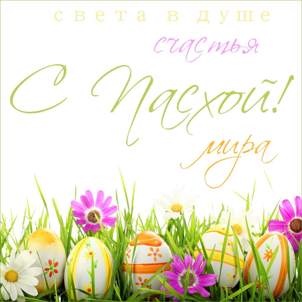 Праздник пасхи , светлый праздник пасхи , открытки с пасхальными яйцами Праздник пасхи , светлый праздник пасхи , картинка , открытка с изображением пасхальных яиц , разноцветные яйца , яркие цветы , яркие открытки с праздником пасхи.