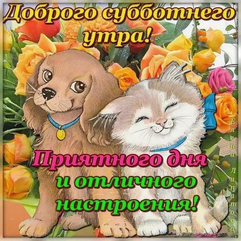 Картинка ,открытка доброе утро субботы, с добрым утром субботы Открытки ,картинки с пожеланиями доброго утра субботы,субботнее утро,открытка суббота доброе утро,картинка,открытка доброе утро субботы,суббота скачать бесплатно