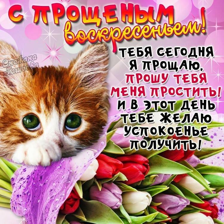 для них поздравление день прощенного воскресенья розовыми прядями