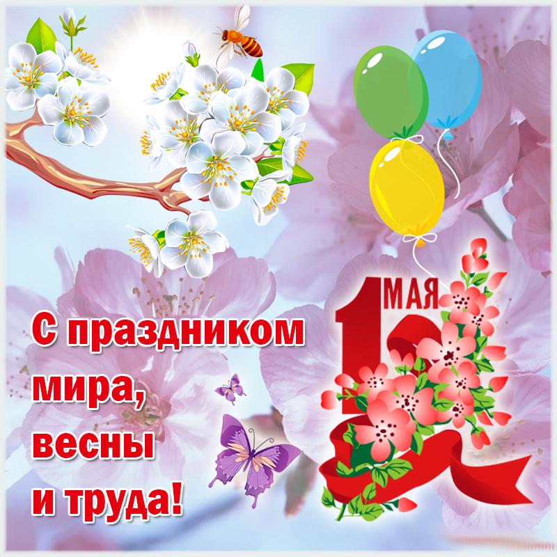 обои майские праздники открытка картинка они
