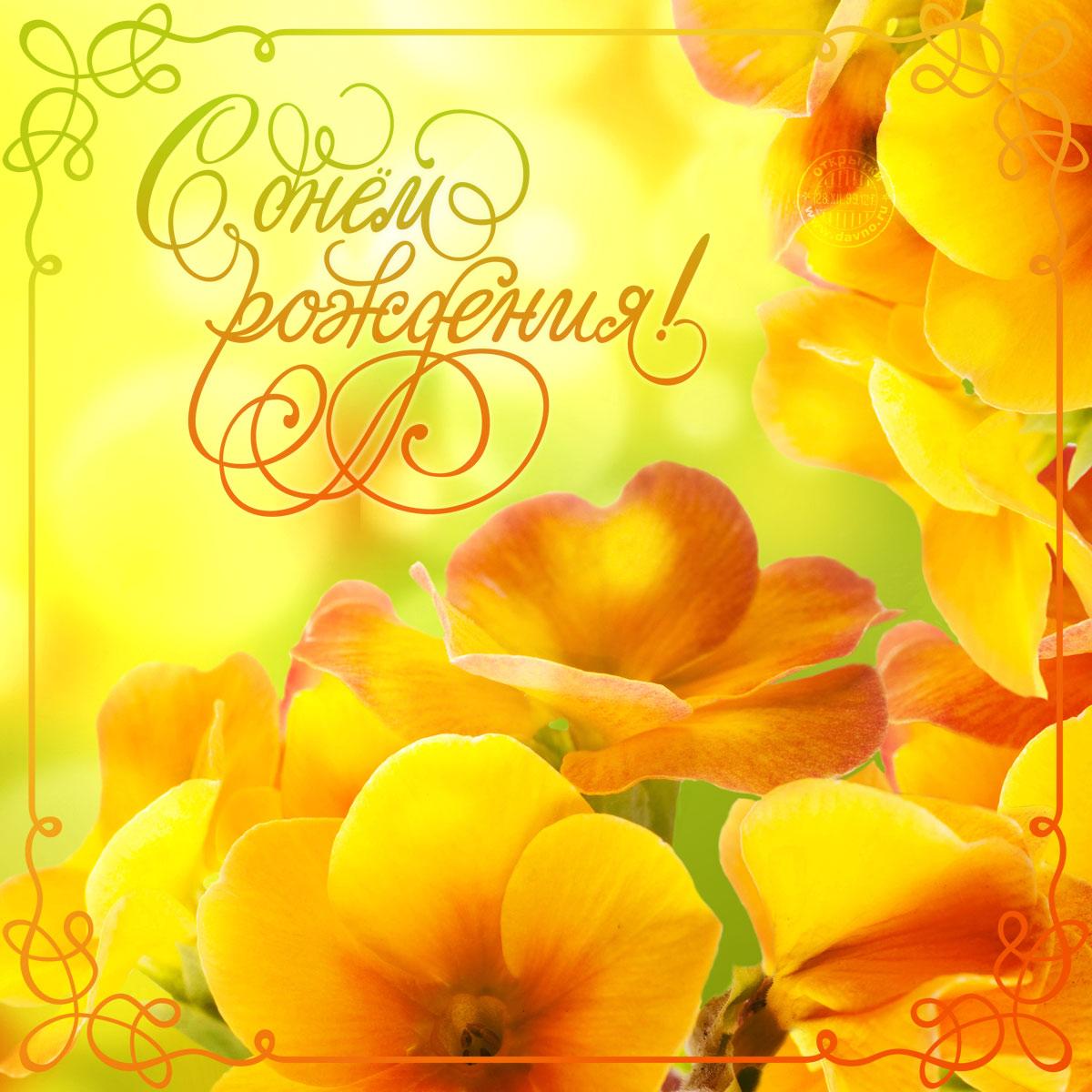 Открытки с днем рождения открытки цветы