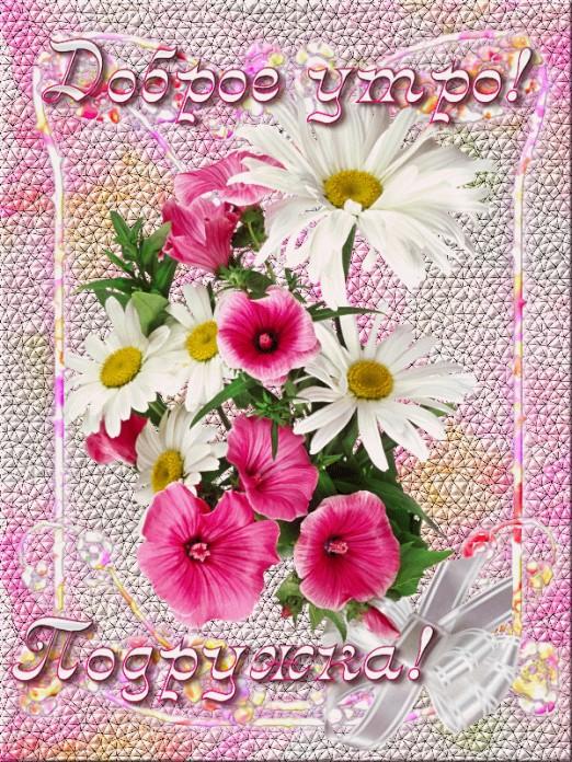 Прикольные открытки с пожеланием счастливого пути использовании растением