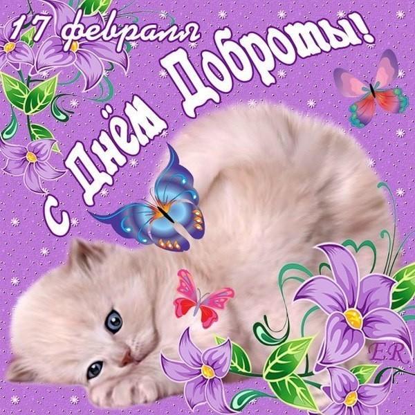 Открытка международный день доброты , с праздником день доброты , котик Открытка , картинка с всемирным праздником день доброты , открытки к празднику день доброты , картинки с днём доброты ,на открытке котик , кот ,день доброты скачать бесплатно