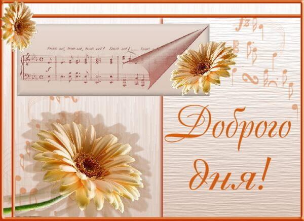 открытки с пожеланием доброго дня красивые с цветами хорошего настраения открытки с пожеланием доброго дня хорошего дня настроения с красивыми цветами чудесного настроения на весь день яркие краски позитив заряд бодрости на весь день
