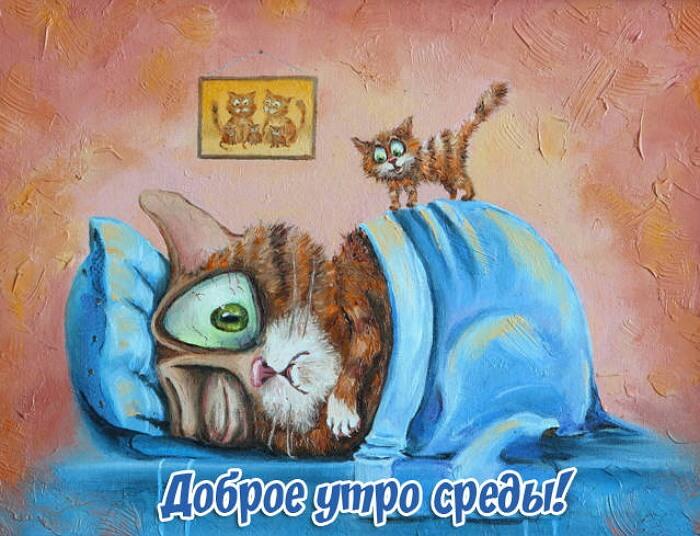 Открытки,картинки доброе утро среды,доброе утро среда, среда утро доброе Картинки,открытки доброе утро среды,открытка доброе утро среда, картинка среда доброе утро, пожелания доброго утра среда , с добрым утром среда  открытки скачать
