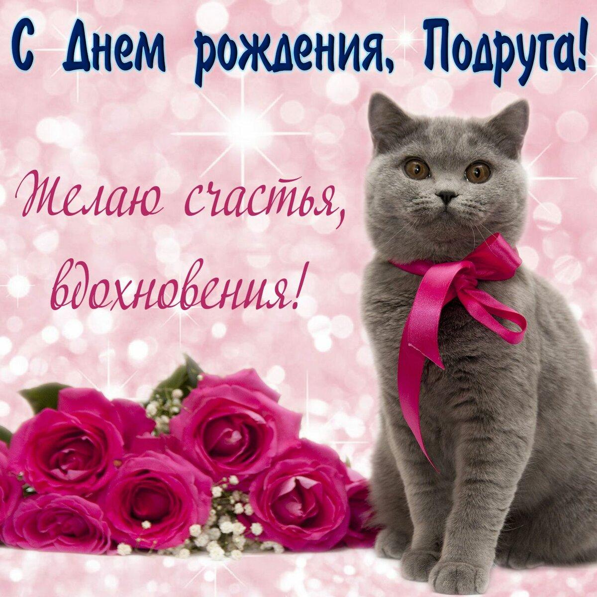 Открытка с днём рождения подруга,красивые поздравления подруге Картинки,открытки на день рождения подруге,с днём рождения подруга,кот,открытка открытки подруге на день рождения,красивые,яркие открытки в день рождения подруге скачать
