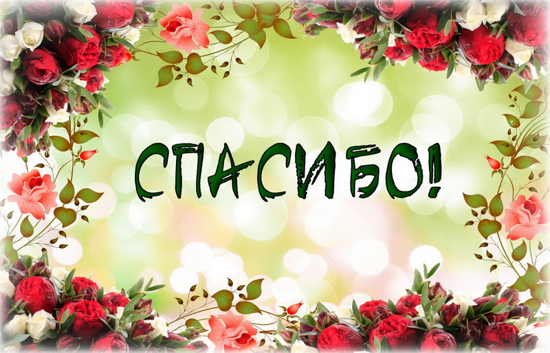 Открытки цветы со словом спасибо