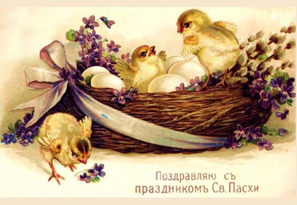 Пасха , светлый праздник пасхи , ретро открытка с циплятами . Пасха , светлый праздник пасхи , картинка , открытка ретро , винтаж , с изображением  на открытке жёлтых циплят , красивые цветы , с праздником светлой пасхи .