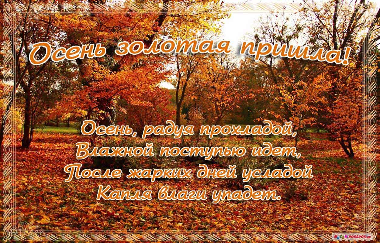 краски открытки осень наступила фото поздравление рождением сына