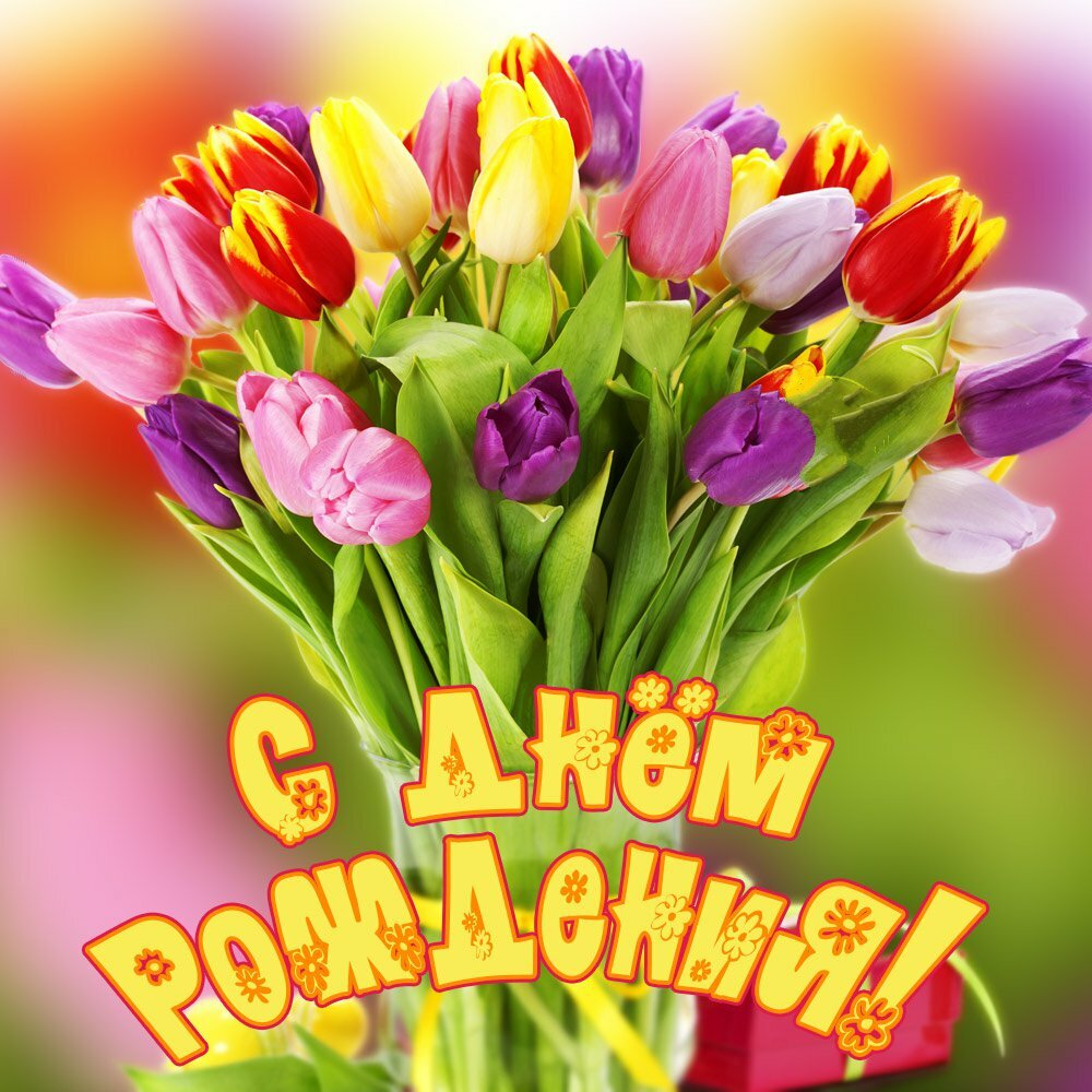 С днём рождения , открытки с поздравлениями с днём рождения яркие цветы С днём рождения , открытки , картинки с поздравлениями в день рождения , яркие цветы , с изображением ярких цветов на картинке с днём рождения, яркие краски , цветы