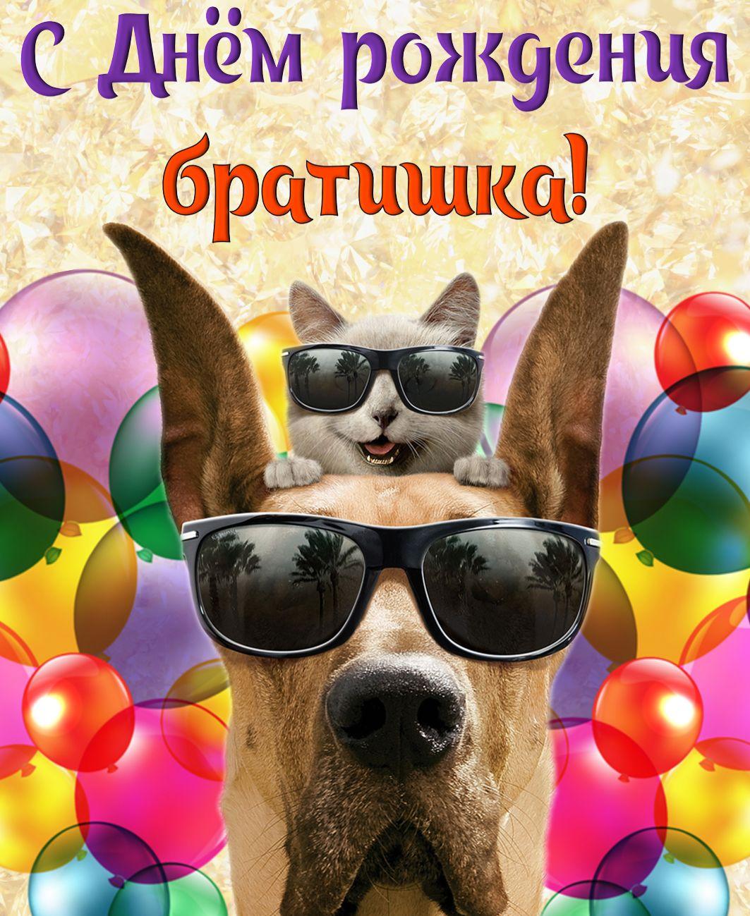 подробно с днем рождения братишка от сестры прикольные открытки прикольные предоставляется