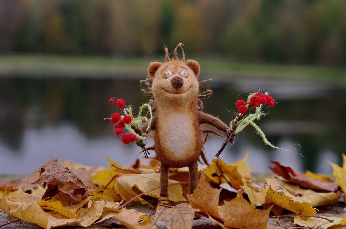 Прикольные картинки октябрь