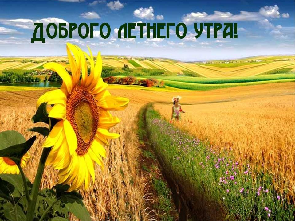 открытки с добрым утром природа лето самом параде
