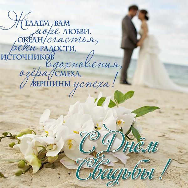 носит поздравление на свадьбу друзьям в открытке бесплатно